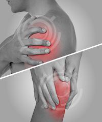 肩の痛みとひざの痛みに特化